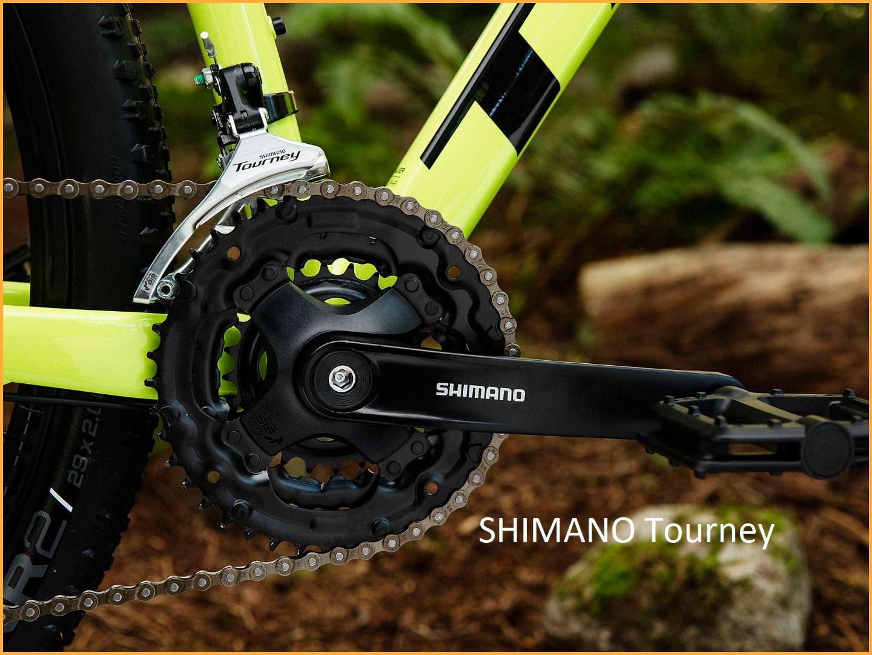 SHIMANO-Tourney-1.jpg